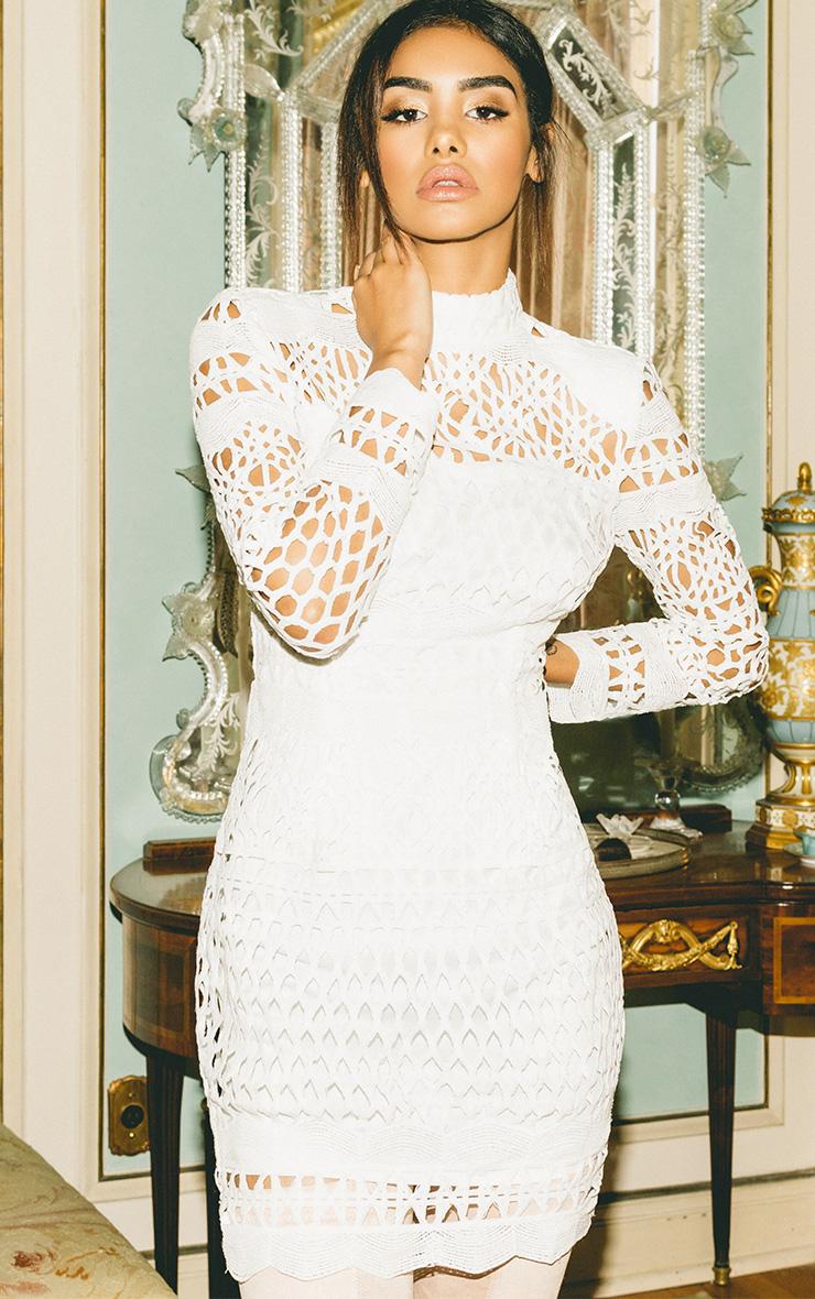 Lexi White Premium Crochet Lace Long Sleeve Bodycon Dress