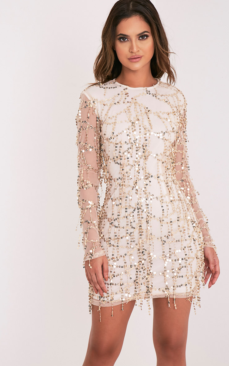 Sequin Dresses | Sparkly Dress - 233.7KB