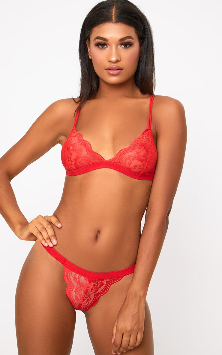 All red lingerie set authoritative
