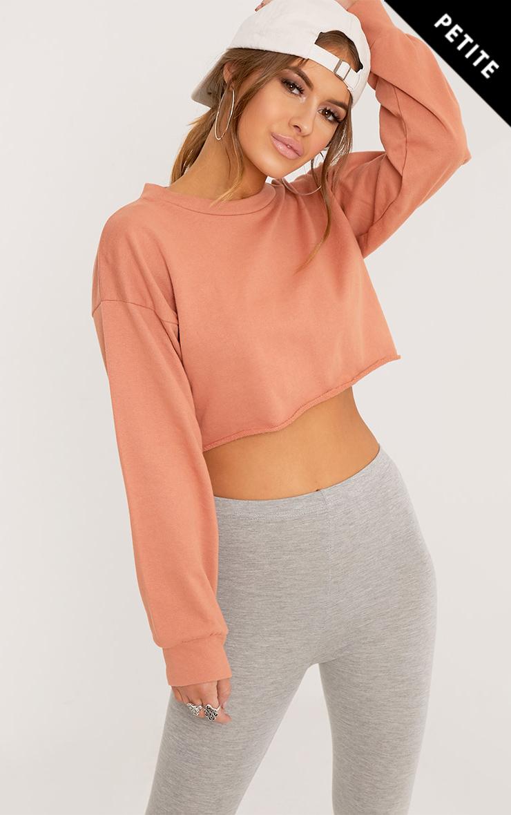 Petite Shirts Blouses