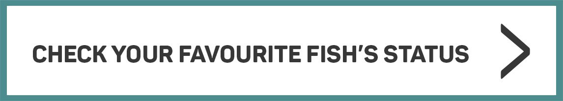 Check your favourite fish's status >