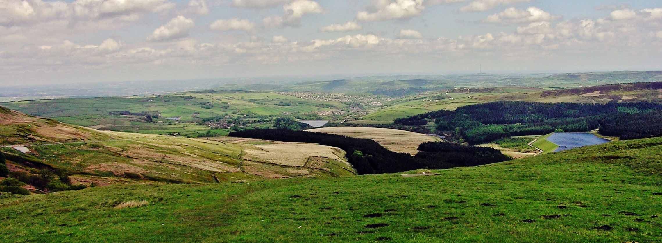 Holme Moors 2