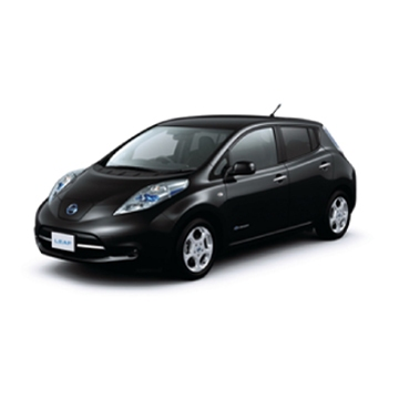 Nissan Leaf Icon 2