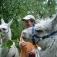 Lama-Wanderung mit Ostereier-Suchen