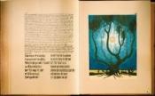 """""""Das Rote Buch"""" von C.G.Jung - eine Reise in das innere Weltall"""