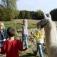 Osterferien - Ein Ferientag mit Tieren