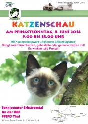 """Katzen Show mit Kinderwettbewerb """"Schönste Spielzeugkatze"""""""