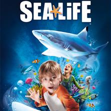 Sea Life Timmendorfer Strand Info Lesen Dauerveranstaltung In