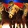 Circus Montana in Laupheim