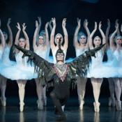 Schwanensee - Russisches Staatstheater für Ballett Komi