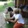 Lesung mit Lamas