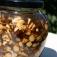 Wurzeln in der Wildkräuterküche und als Medizin