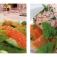 Mediterrane Landhausküche mit Ronald Colditz