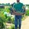 Workshop: Startklar für den Gemüsegarten