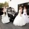 Sonderverkauf Braut- und Abendkleider am 02.07.2016