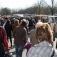 Floh - und Krammarkt zum Blütenfest in Wiesmoor