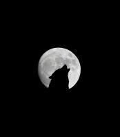 Werwolfwanderung