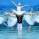 Schwanensee - St. Petersburg Festival Ballet