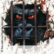 Trancemission Sensles Storm: Monkey Meets Paranoia
