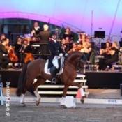 Symphonie der Hengste mit dem Symphonic Pop Orchestra