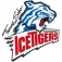Thomas Sabo Ice Tigers - Grizzlys Wolfsburg