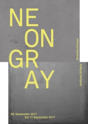 Neongray - Christine Steiner Anthony DiPaola