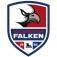 Heilbronner Falken - SC Riessersee