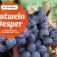 Rotwein Vesper - kulinarische Weinverkostung