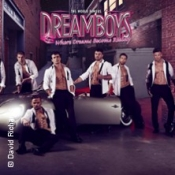 Dreamboys - Träume werden wahr