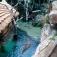 Tropen-Aquarium Hagenbeck