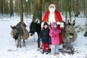 Wildweihnacht im Wildpark Eekholt