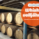 Whisky volljährig – Whiskys 18 Jahre und älter (Tasting)