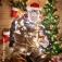 Die Werner Momsen - Ihm seine Weihnachtsshow