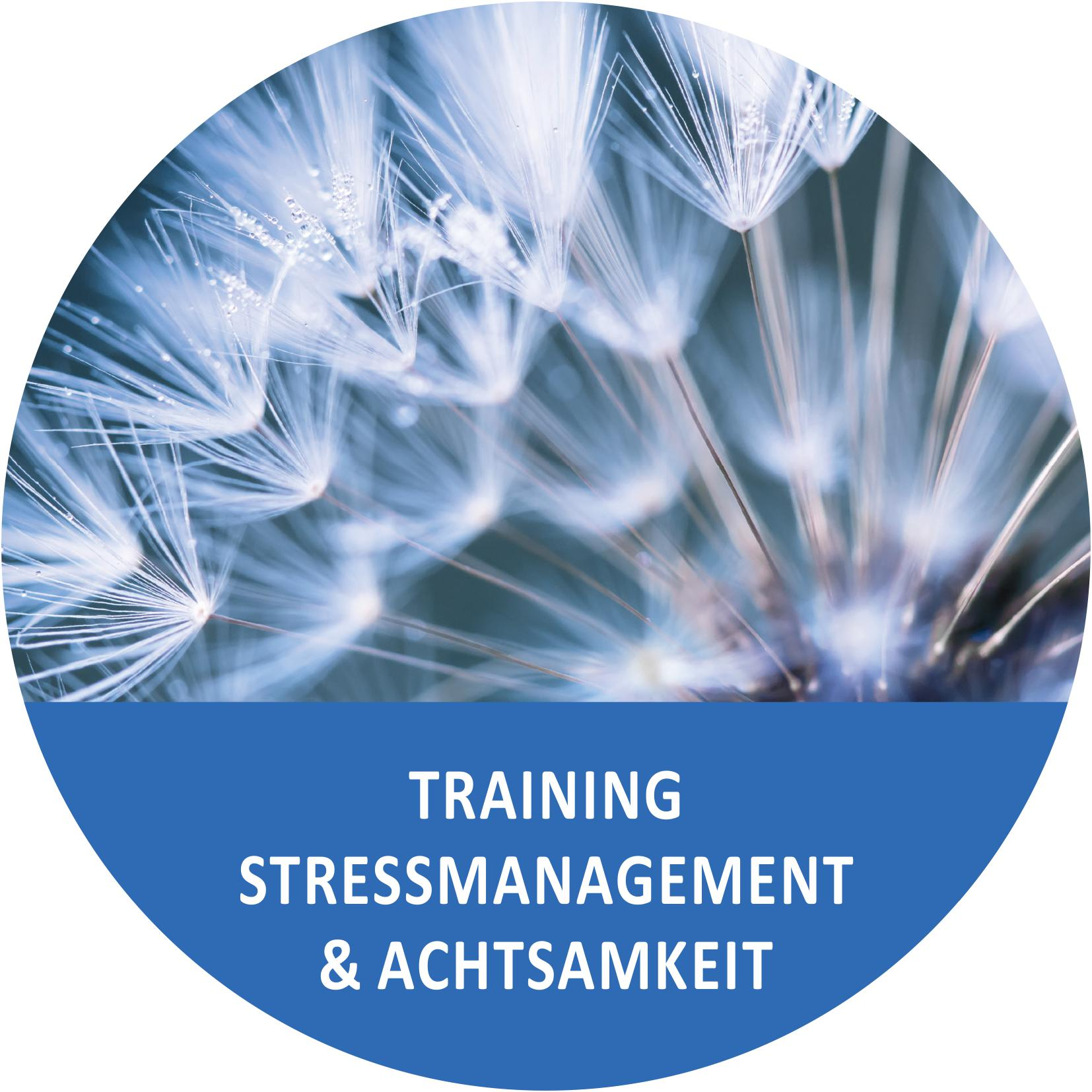 Training: Stressmanagement & Achtsamkeit
