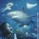 Sea Life Königswinter - Tageskarte