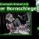 Livemusik-Konzert mit Dieter Bornschlegel