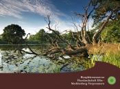 """Multivision """"Flusslandschaft Elbe – Leben am Fluss"""""""