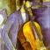 Conrad Nolls Celloprojekt @JazzSpirit