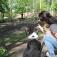 Hundetag im Wildpark-MV