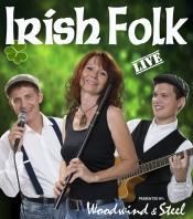 Irish Folk & Entertainment mit Woodwind & Steel
