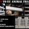 Protestkundgebung gegen EU-weite Tiertransporte