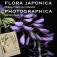 """""""Flora Photographica"""" Ausstellung"""