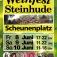 8. Weinfest Steinhude vom 08. bis zum 10. Juni 2018