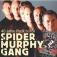 Spider Murphy Gang: Akustik-Tour