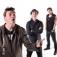 Die Toten Hosen & Die Ärzte Night Live mit Die Toten Ärzte