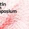 Martin Roth Symposium