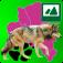 Neuer/Alter Nachbar Wolf
