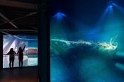 Titanic - 360°panorama Von Yadegar Asisi