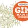 Gin made in Hessen (Gin-Tasting)