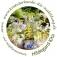 Pflanzenbiotika, Abwehrkraft der Kräuter
